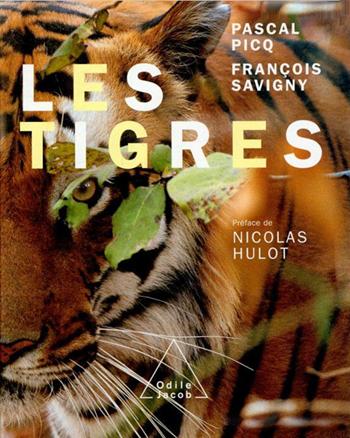 Tigres (Les)