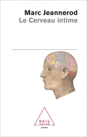 intimate brain (The)