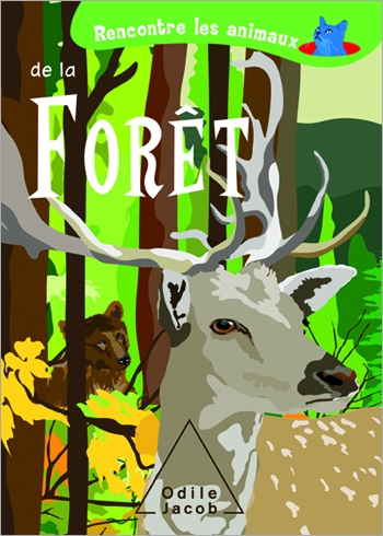 Discover Animals In the Forest