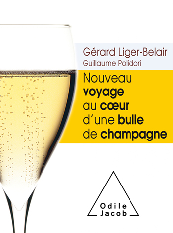 New Voyage to the Heart of a Champagne Bubble